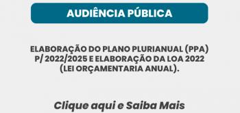 AUDIÊNCIA PÚBLICA ANO: 2021
